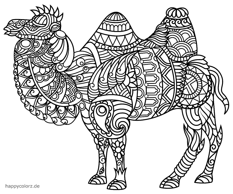 Mandala Kamel zum ausdrucken
