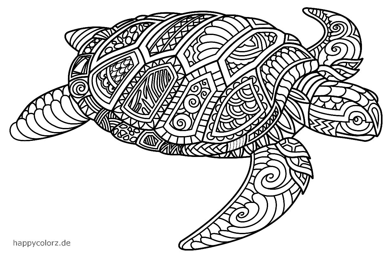 Mandala Schildkröte Vorlage