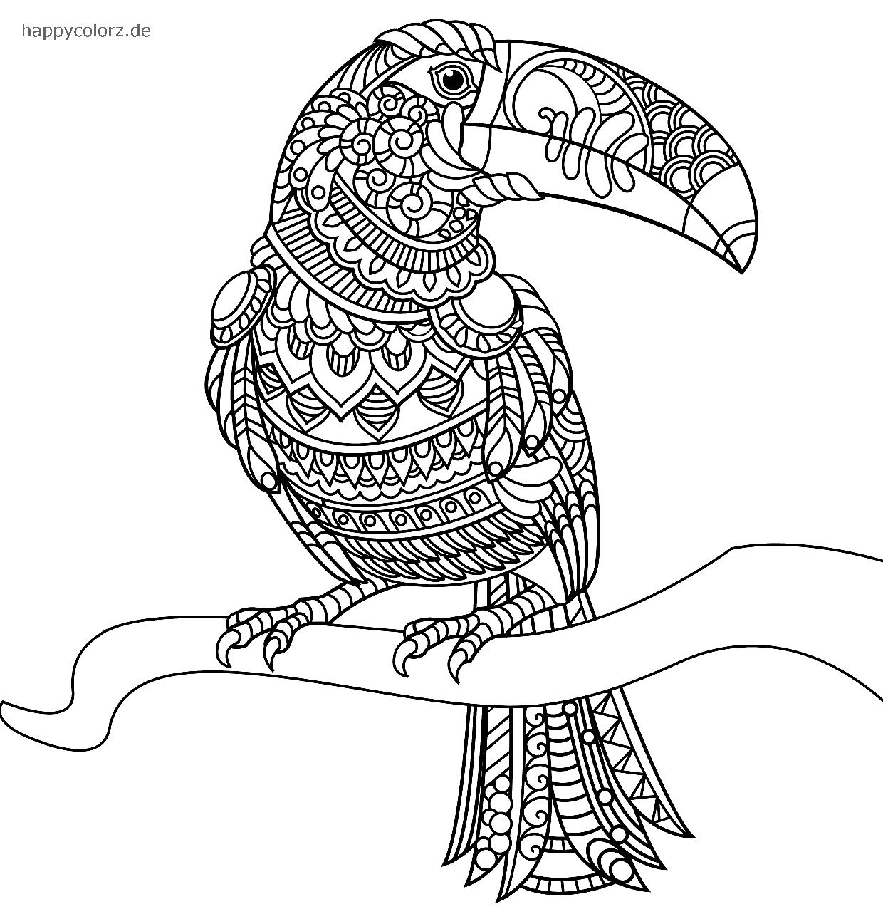 Mandala Vogel Tukan zum ausdrucken