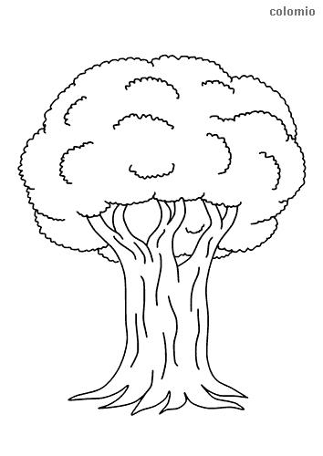 Geheimnisvoller Baum Malvorlage