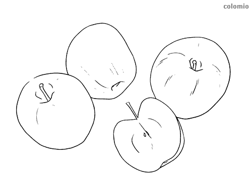 Äpfel aufgeschnitten Ausmalbild
