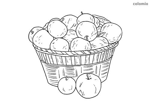Äpfel im Korb Ausmalbild