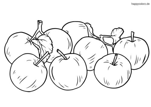 Äpfel Ausmalbild