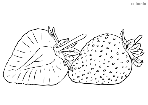 Erdbeere im Querschnitt Ausmalbild