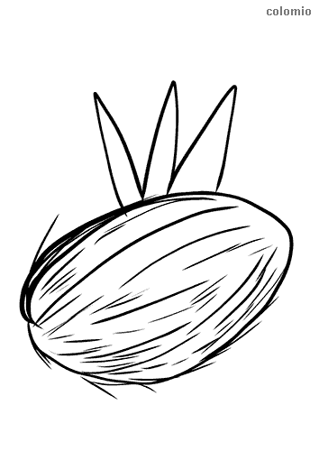 Geschlossene Kokosnuss mit Blatt Ausmalbild