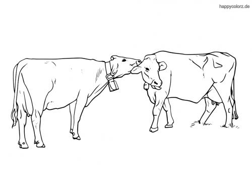 Kühe mit Glocken Ausmalbild