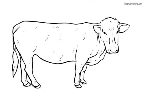 Kuh Ausmalbild