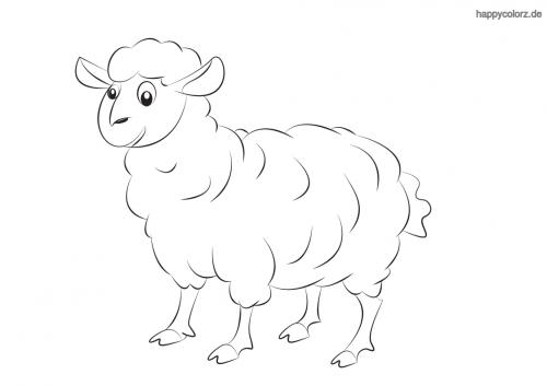 Süßes Schaf Malvorlage