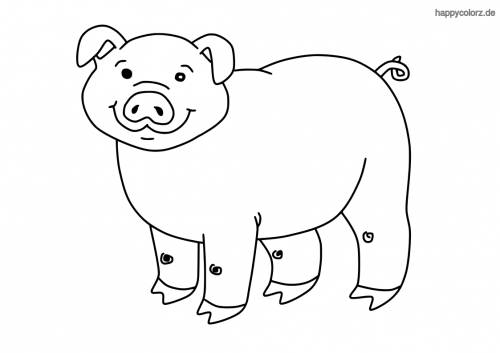 Lachendes Schwein Malvorlage