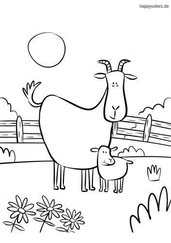 Tiere Malvorlage Kostenlos Tiere Ausmalbilder Seite 5