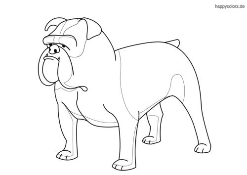 Bulldoge Ausmalbild