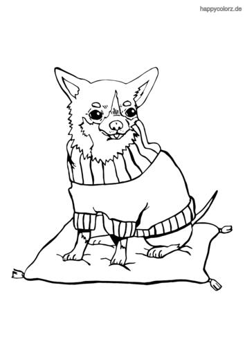 Chihuahua Ausmalbild