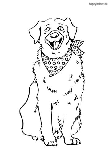 ausmalbilder hunde golden retriever  zeichnen und färben