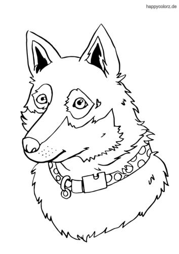 Schäferhund-Mix ausmalen