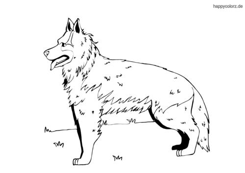 Schäferhund ausmalen