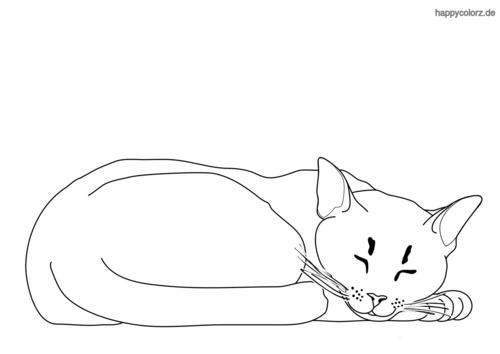 schlafende Katze Ausmalbild