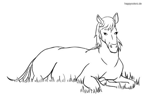 Liegendes Pferd Malvorlage