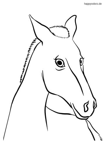 Neugieriges Pferd Malvorlage
