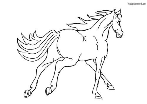Pferd im Galopp Malvorlage