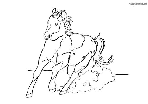 Pferd im schnellen Galopp Ausmalbild