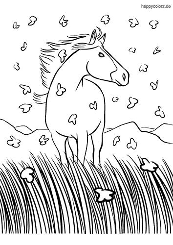 Pferd mit Schmetterlingen Malvorlage