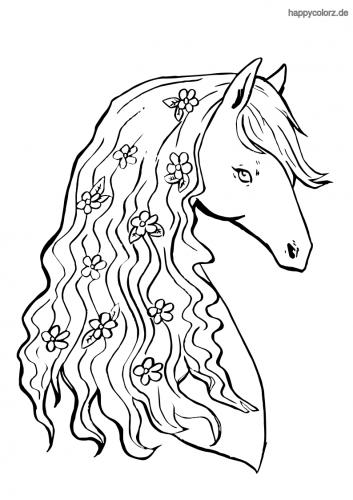 Pferd Malvorlage Kostenlos Pferde Ausmalbilder