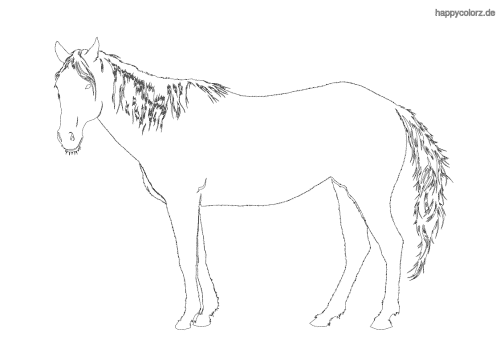 Pferdesilhouette Malvorlage