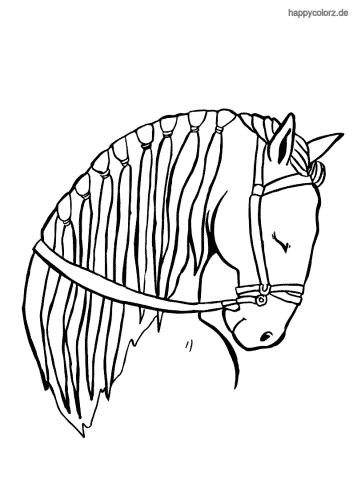 schlafendes Pferd Kopf Ausmalbild