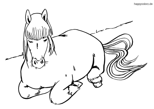 Schlafendes Pferd Ausmalbild