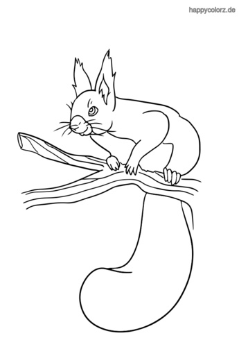 Eichhörnchen auf Zweig Ausmalbild