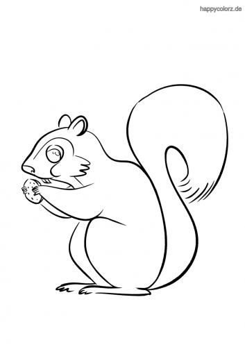 Eichhörnchen knabbert Nuss Ausmalbild
