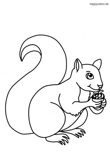 Lachendes Eichhörnchen mit Nuss Ausmalbild