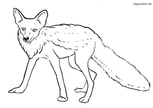 Lauernder Fuchs ausmalen