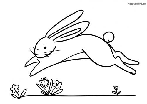 Springender Hase Ausmalbild