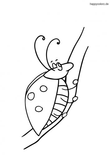 Krabbelnder Marienkäfer Malvorlage