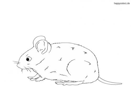 Kleine Maus ausmalen