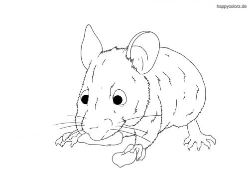 Knabbernde Maus ausmalen