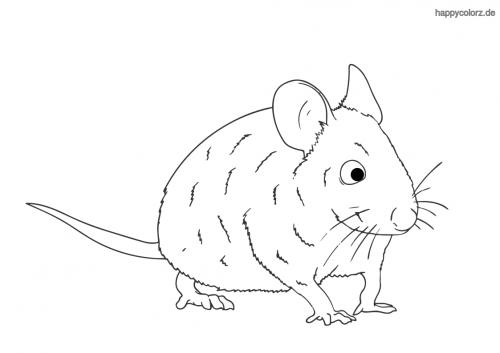Neugierige Maus ausmalen