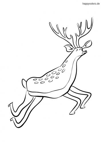 Springender Hirsch Ausmalbild