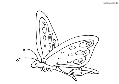 Fliegender Schmetterling ausmalen