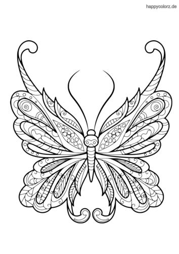 Schmetterling Malvorlage