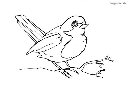 Vogel Malvorlage Kostenlos Vögel Ausmalbilder
