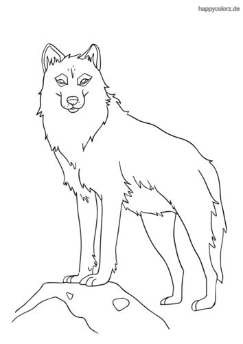 Einsamer Wolf Ausmalbild