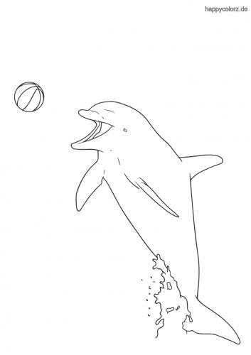 Delfin mit Ball ausmalen