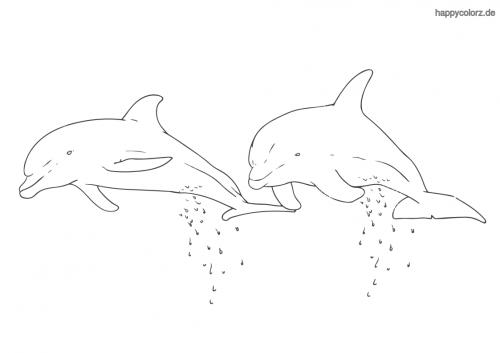 Delfin-Paar ausmalen