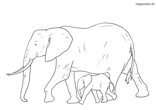 Elefant mit Baby Ausmalbild