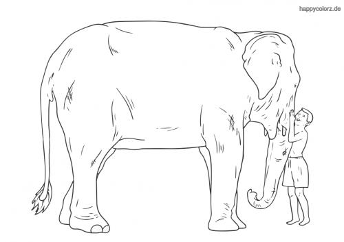 Elefant mit Kind ausmalen
