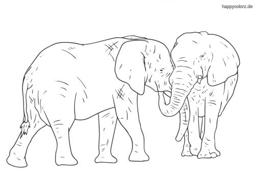 Elefantenpaar Ausmalbild