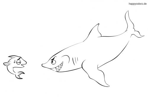 Hai mit kleinem Fisch Ausmalbild
