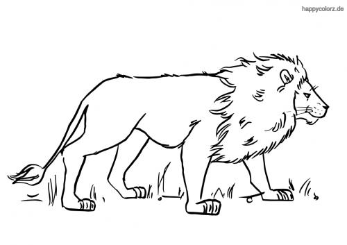 Lauernder Löwe Ausmalbild